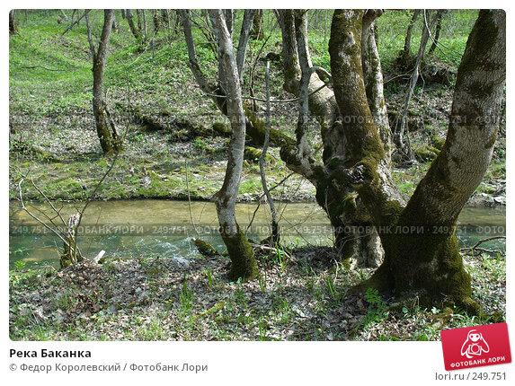 Река Баканка, фото № 249751, снято 12 апреля 2008 г. (c) Федор Королевский / Фотобанк Лори