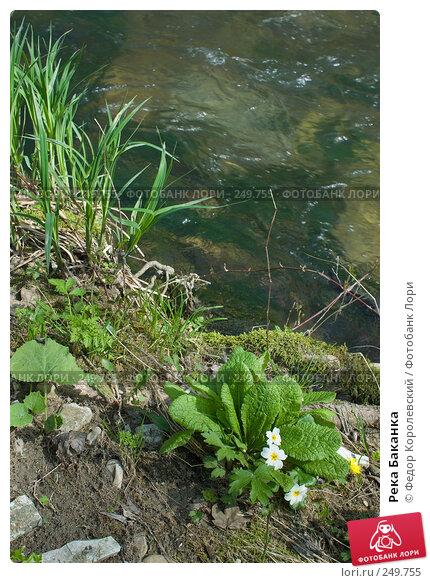 Река Баканка, фото № 249755, снято 12 апреля 2008 г. (c) Федор Королевский / Фотобанк Лори