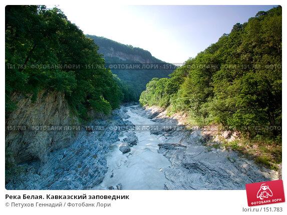 Река Белая. Кавказский заповедник, фото № 151783, снято 10 августа 2007 г. (c) Петухов Геннадий / Фотобанк Лори