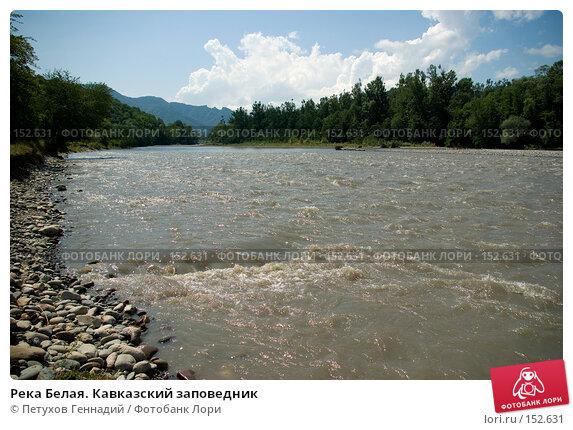 Река Белая. Кавказский заповедник, фото № 152631, снято 10 августа 2007 г. (c) Петухов Геннадий / Фотобанк Лори