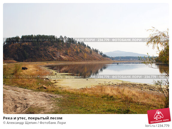 Река и утес, покрытый лесом, эксклюзивное фото № 234779, снято 24 сентября 2007 г. (c) Александр Щепин / Фотобанк Лори