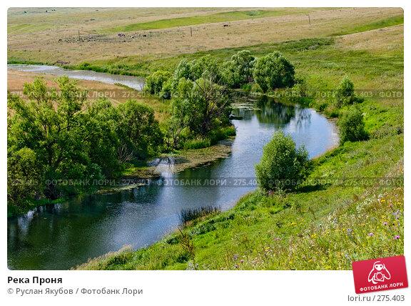 Река Проня, фото № 275403, снято 21 июля 2007 г. (c) Руслан Якубов / Фотобанк Лори