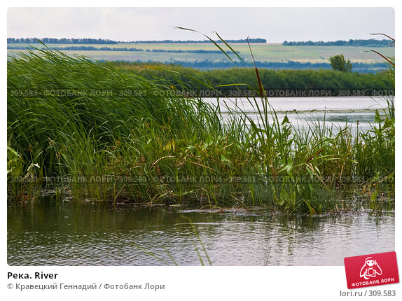 Река. River, фото № 309583, снято 11 августа 2004 г. (c) Кравецкий Геннадий / Фотобанк Лори
