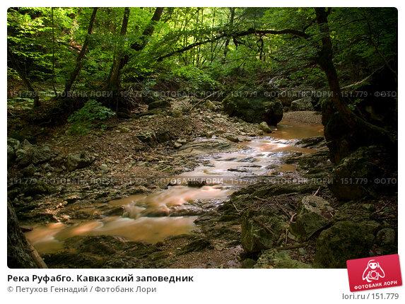 Река Руфабго. Кавказский заповедник, фото № 151779, снято 10 августа 2007 г. (c) Петухов Геннадий / Фотобанк Лори