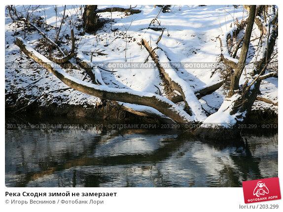 Река Сходня зимой не замерзает, фото № 203299, снято 16 февраля 2008 г. (c) Игорь Веснинов / Фотобанк Лори