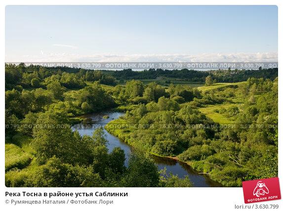 Купить «Река Тосна в районе устья Саблинки», фото № 3630799, снято 28 июня 2012 г. (c) Румянцева Наталия / Фотобанк Лори