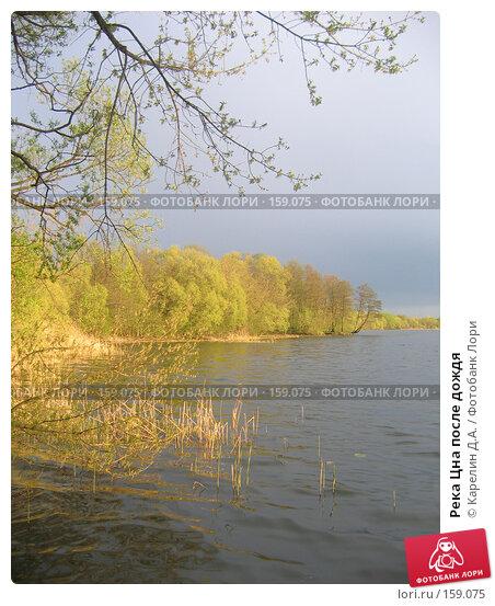 Купить «Река Цна после дождя», фото № 159075, снято 10 мая 2007 г. (c) Карелин Д.А. / Фотобанк Лори