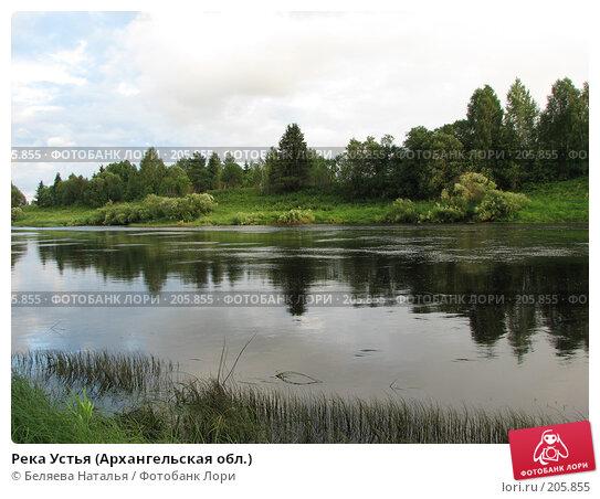 Купить «Река Устья (Архангельская обл.)», фото № 205855, снято 20 июля 2007 г. (c) Беляева Наталья / Фотобанк Лори