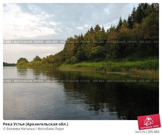 Река Устья (Архангельская обл.), фото № 205883, снято 26 июля 2007 г. (c) Беляева Наталья / Фотобанк Лори