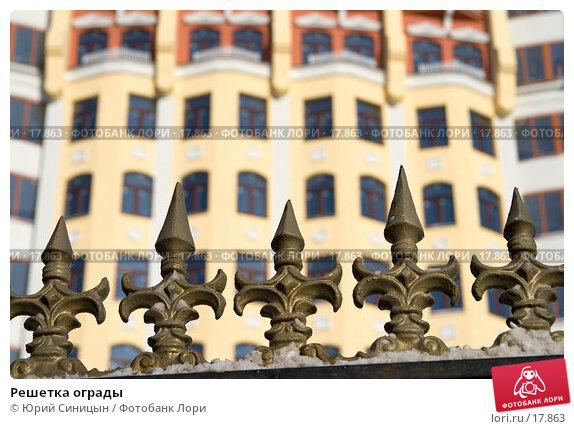Решетка ограды, фото № 17863, снято 26 января 2007 г. (c) Юрий Синицын / Фотобанк Лори
