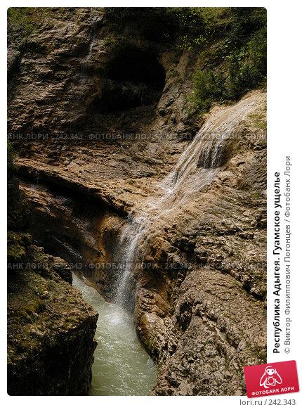 Купить «Республика Адыгея. Гуамское ущелье», фото № 242343, снято 1 мая 2006 г. (c) Виктор Филиппович Погонцев / Фотобанк Лори