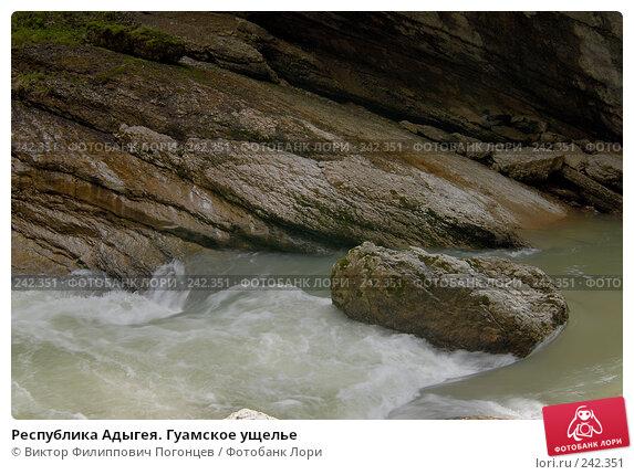 Республика Адыгея. Гуамское ущелье, фото № 242351, снято 1 мая 2006 г. (c) Виктор Филиппович Погонцев / Фотобанк Лори