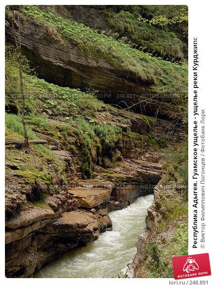 Купить «Республика Адыгея. Гуамское ущелье - ущелье реки Курджипс», фото № 248891, снято 1 мая 2006 г. (c) Виктор Филиппович Погонцев / Фотобанк Лори