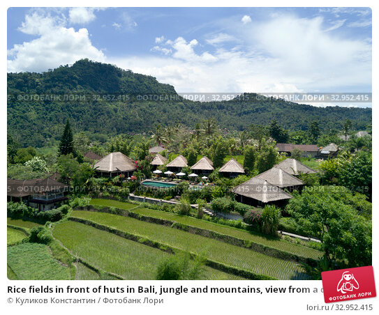 Rice fields in front of huts in Bali, jungle and mountains, view from a drone (2017 год). Стоковое фото, фотограф Куликов Константин / Фотобанк Лори