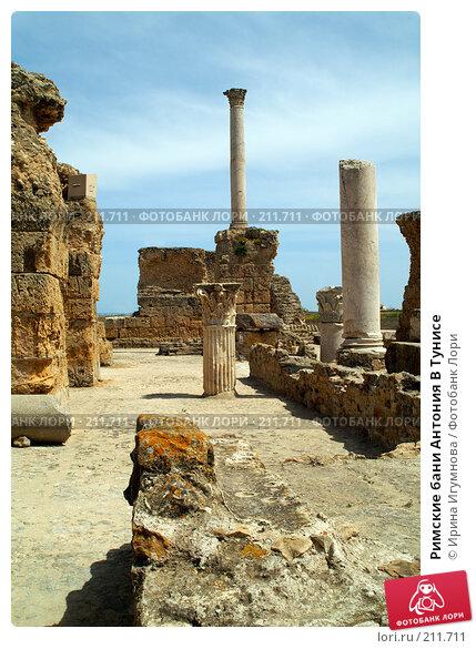 Римские бани Антония В Тунисе, фото № 211711, снято 12 июня 2006 г. (c) Ирина Игумнова / Фотобанк Лори