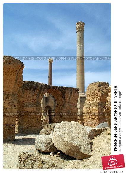 Римские бани Антония в Тунисе, фото № 211715, снято 12 июня 2006 г. (c) Ирина Игумнова / Фотобанк Лори