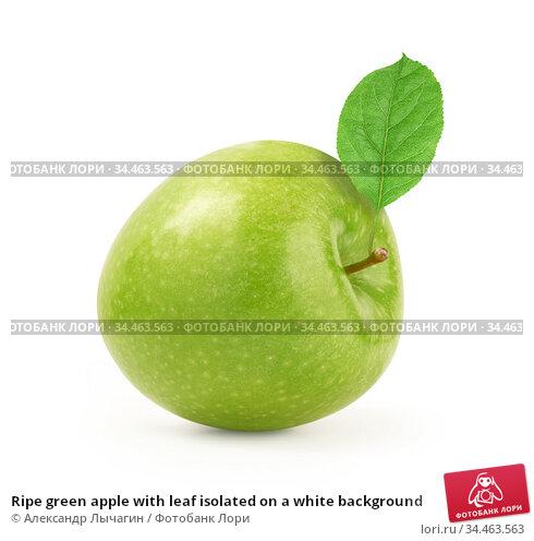 Ripe green apple with leaf isolated on a white background. Стоковое фото, фотограф Александр Лычагин / Фотобанк Лори