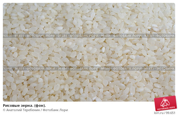 Рисовые зерна. (фон)., фото № 99651, снято 13 октября 2007 г. (c) Анатолий Теребенин / Фотобанк Лори