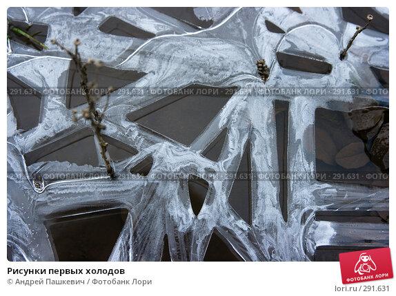 Купить «Рисунки первых холодов», фото № 291631, снято 20 апреля 2018 г. (c) Андрей Пашкевич / Фотобанк Лори