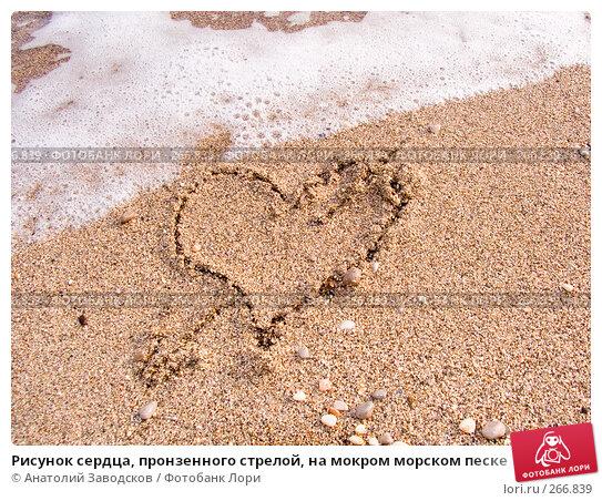Рисунок сердца, пронзенного стрелой, на мокром морском песке, фото № 266839, снято 14 сентября 2006 г. (c) Анатолий Заводсков / Фотобанк Лори