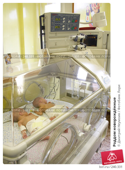 Роддом новорождённые, эксклюзивное фото № 240331, снято 31 августа 2006 г. (c) Дмитрий Неумоин / Фотобанк Лори