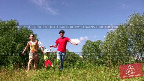 Купить «Родителя держат дочку за руки навесу в парке летом», видеоролик № 3524959, снято 9 июля 2008 г. (c) Losevsky Pavel / Фотобанк Лори