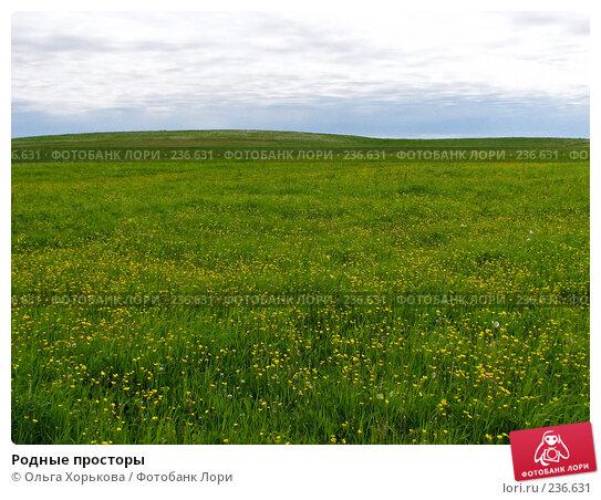 Родные просторы, фото № 236631, снято 11 июня 2007 г. (c) Ольга Хорькова / Фотобанк Лори