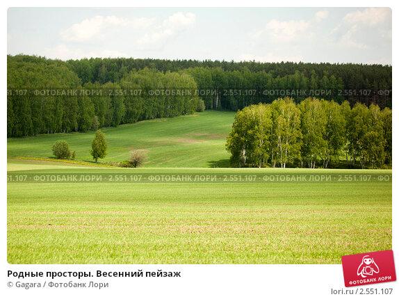 Родные просторы. Весенний пейзаж, эксклюзивное фото № 2551107, снято 21 мая 2011 г. (c) Gagara / Фотобанк Лори