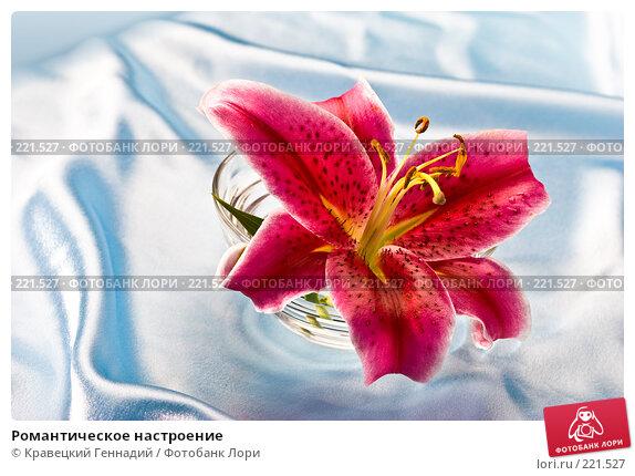 Купить «Романтическое настроение», фото № 221527, снято 3 августа 2005 г. (c) Кравецкий Геннадий / Фотобанк Лори
