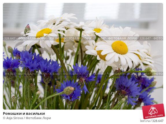 Ромашки и васильки, фото № 328647, снято 11 июня 2008 г. (c) Asja Sirova / Фотобанк Лори
