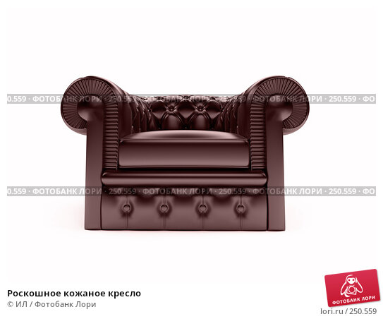 Купить «Роскошное кожаное кресло», иллюстрация № 250559 (c) ИЛ / Фотобанк Лори
