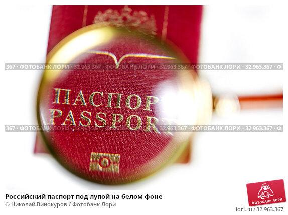 Купить «Российский паспорт под лупой на белом фоне», фото № 32963367, снято 21 января 2020 г. (c) Николай Винокуров / Фотобанк Лори