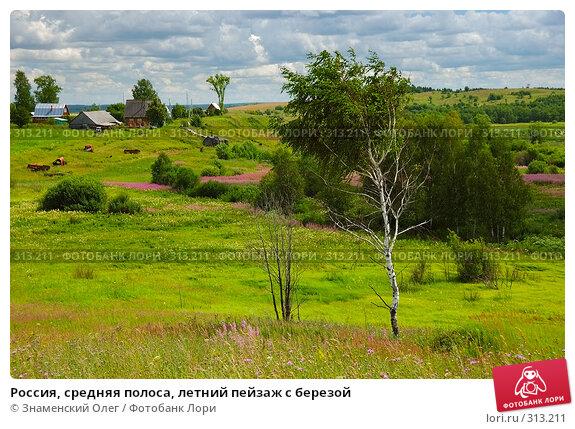 Россия, средняя полоса, летний пейзаж с березой, эксклюзивное фото № 313211, снято 15 июля 2007 г. (c) Знаменский Олег / Фотобанк Лори