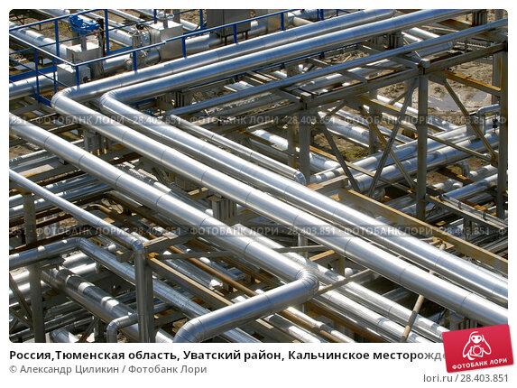 Купить «Россия,Тюменская область, Уватский район, Кальчинское месторождение нефти,   стальные трубопроводы и  ёмкости», эксклюзивное фото № 28403851, снято 25 августа 2009 г. (c) Александр Циликин / Фотобанк Лори
