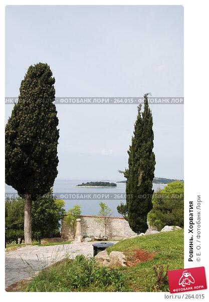 Ровинь. Хорватия, фото № 264015, снято 25 апреля 2008 г. (c) Екатерина Овсянникова / Фотобанк Лори
