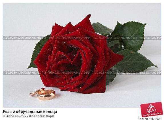 Роза и обручальные кольца, фото № 160923, снято 23 декабря 2007 г. (c) Anna Kavchik / Фотобанк Лори