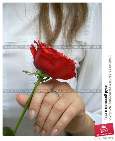 Роза в женской руке, фото № 69303, снято 29 июля 2007 г. (c) Огульчанский Александер / Фотобанк Лори