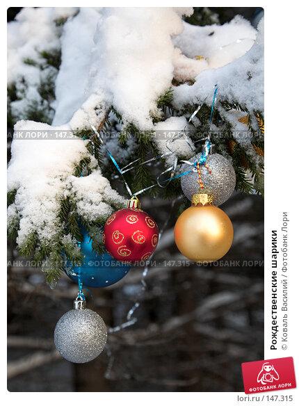 Рождественские шарики, фото № 147315, снято 10 ноября 2007 г. (c) Коваль Василий / Фотобанк Лори