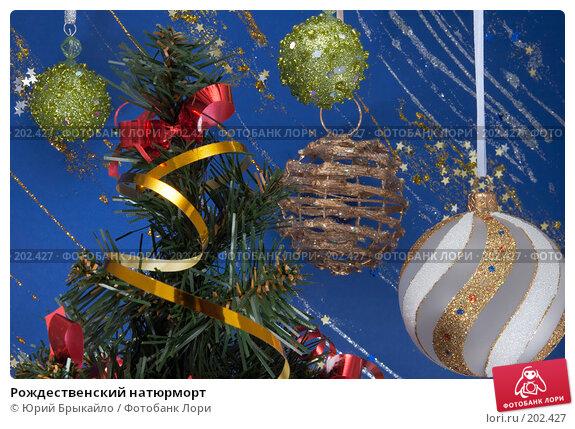 Рождественский натюрморт, фото № 202427, снято 25 ноября 2007 г. (c) Юрий Брыкайло / Фотобанк Лори