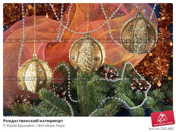 Рождественский натюрморт, фото № 202443, снято 2 декабря 2007 г. (c) Юрий Брыкайло / Фотобанк Лори