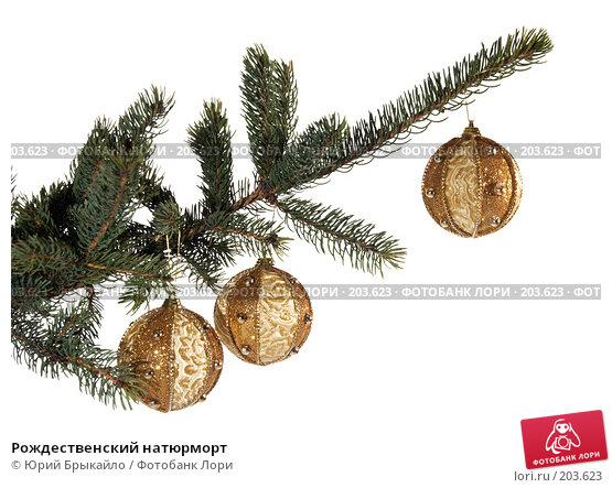 Рождественский натюрморт, фото № 203623, снято 2 декабря 2007 г. (c) Юрий Брыкайло / Фотобанк Лори