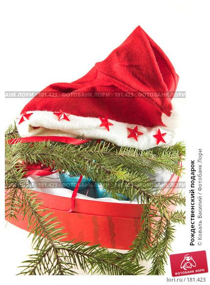 Рождественский подарок, фото № 181423, снято 22 ноября 2006 г. (c) Коваль Василий / Фотобанк Лори