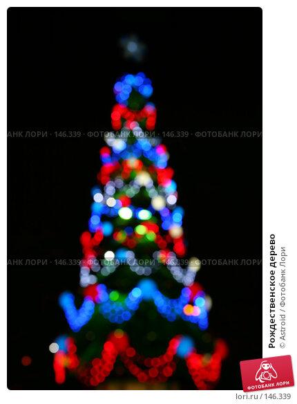 Рождественское дерево, фото № 146339, снято 7 декабря 2007 г. (c) Astroid / Фотобанк Лори