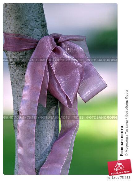 Розовая лента, фото № 75183, снято 6 июля 2006 г. (c) Морозова Татьяна / Фотобанк Лори