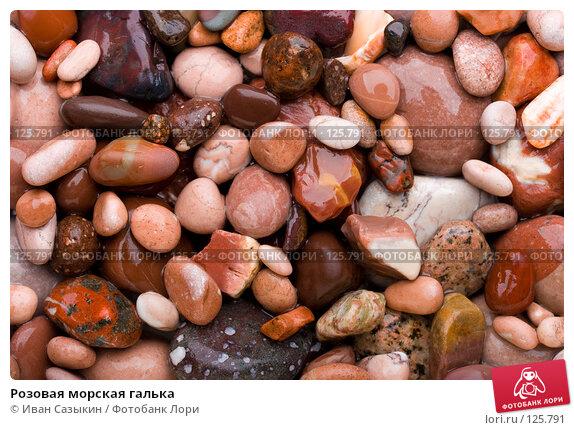 Розовая морская галька, фото № 125791, снято 9 ноября 2007 г. (c) Иван Сазыкин / Фотобанк Лори