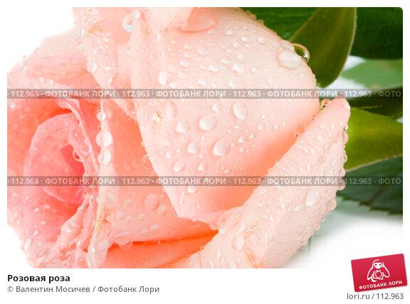 Купить «Розовая роза», фото № 112963, снято 16 февраля 2007 г. (c) Валентин Мосичев / Фотобанк Лори