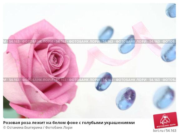 Розовая роза лежит на белом фоне с голубыми украшениями, фото № 54163, снято 29 марта 2007 г. (c) Останина Екатерина / Фотобанк Лори