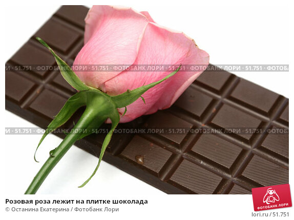 Розовая роза лежит на плитке шоколада, фото № 51751, снято 21 февраля 2007 г. (c) Останина Екатерина / Фотобанк Лори