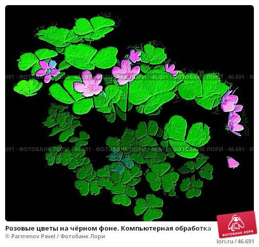 Розовые цветы на чёрном фоне. Компьютерная обработка, иллюстрация № 46691 (c) Parmenov Pavel / Фотобанк Лори