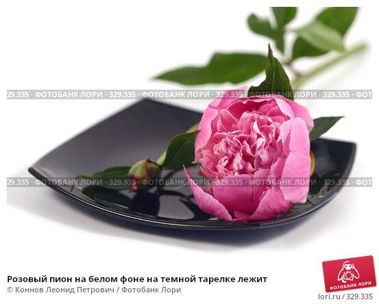 Розовый пион на белом фоне на темной тарелке лежит, фото № 329335, снято 20 июня 2008 г. (c) Коннов Леонид Петрович / Фотобанк Лори